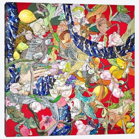 Cyranaica Canvas Print #LLE116} by Larisa Ilieva Canvas Wall Art