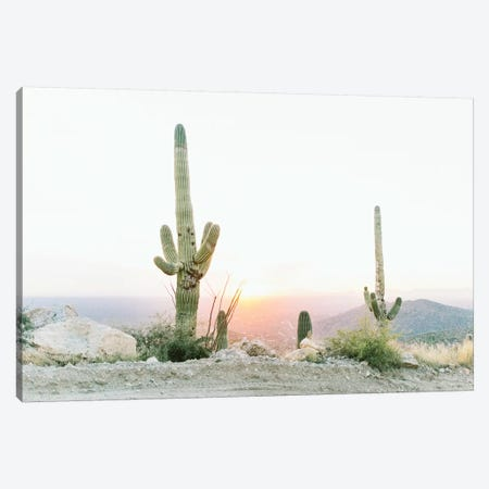 Saguros In The Sun, Tuscon, Arizona Canvas Print #LLH105} by lovelylittlehomeco Canvas Wall Art