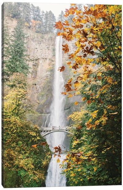 Waterfall III, Portland, Oregon Canvas Art Print