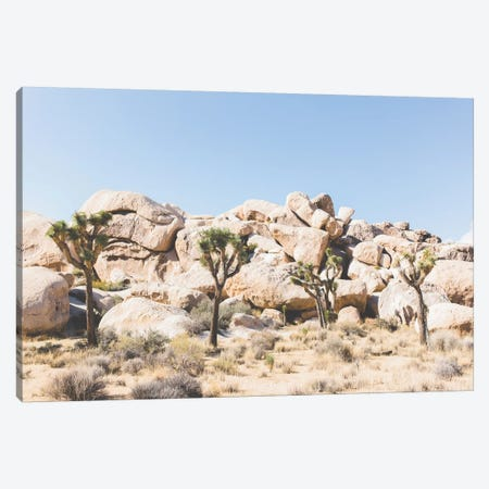 Desert Landscape IV, Joshua Tree, California Canvas Print #LLH53} by lovelylittlehomeco Art Print