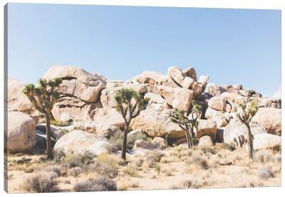 Desert Landscape IV, Joshua Tree, California Canvas Art Print