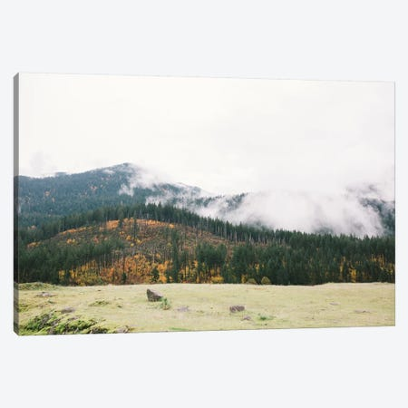 Mountains, Portland, Oregon Canvas Print #LLH82} by lovelylittlehomeco Canvas Artwork