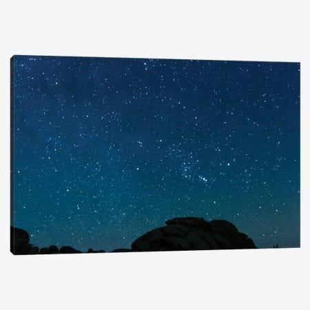 Night Sky, Joshua Tree, California Canvas Print #LLH84} by lovelylittlehomeco Art Print