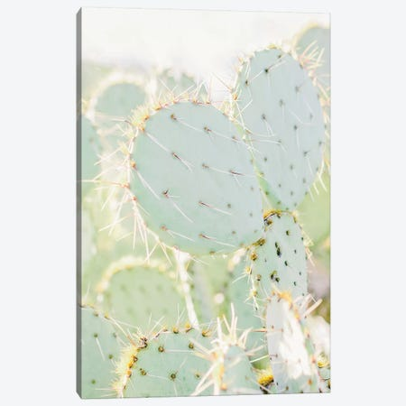 Prickly Pear I, Tuscon, Arizona Canvas Print #LLH99} by lovelylittlehomeco Art Print