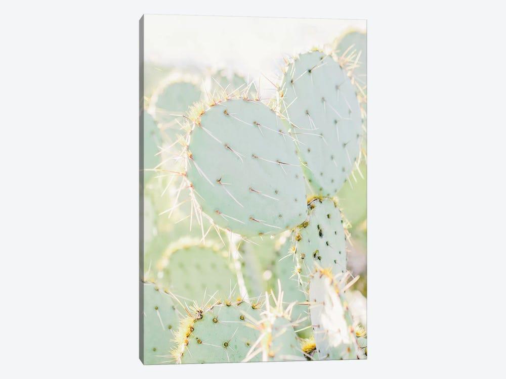 Prickly Pear I, Tuscon, Arizona by lovelylittlehomeco 1-piece Canvas Artwork