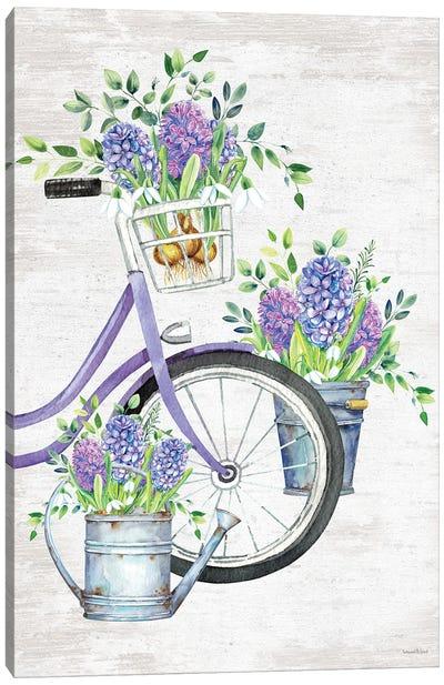 Hyacinth Harvest Canvas Art Print