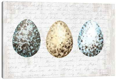 Speckled Eggs Canvas Art Print