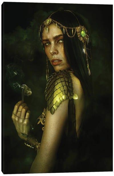 The Mystic Canvas Art Print