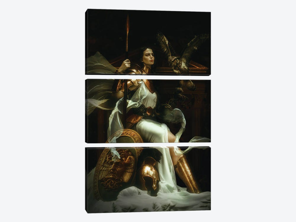 Athena by Lillian Liu 3-piece Canvas Wall Art