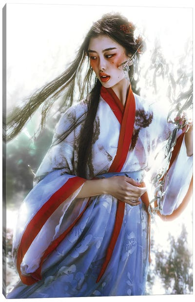 The Dreamer II Canvas Art Print