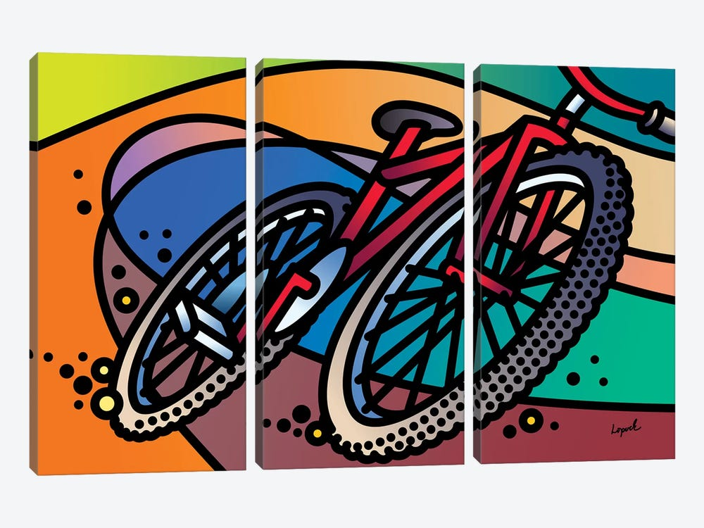 Flow Line by Lisa Lopuck 3-piece Canvas Print