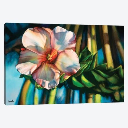 Hawaiiana Canvas Print #LLP18} by Lisa Lopuck Art Print