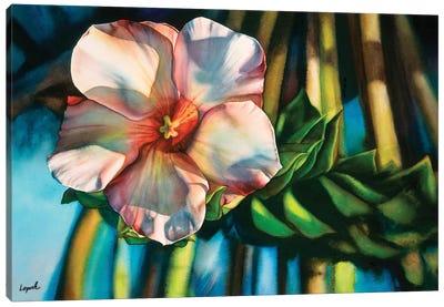 Hawaiiana Canvas Art Print