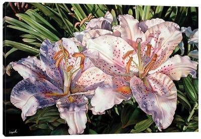 Lilies Lanai Canvas Art Print