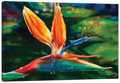 Morning Maui Canvas Art Print