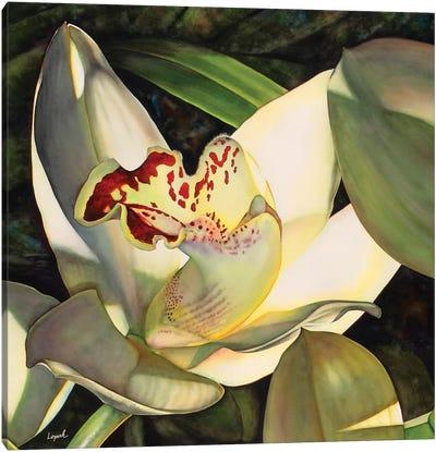 Pale Orchid I Canvas Art Print
