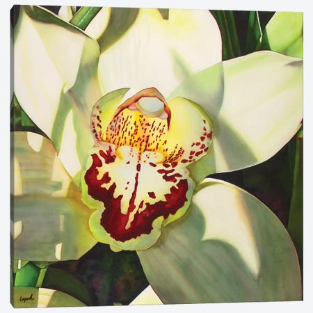Pale Orchid II Canvas Print #LLP35} by Lisa Lopuck Canvas Wall Art