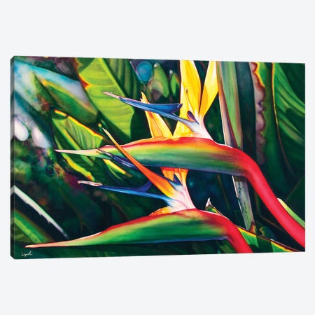 View Hanalei Canvas Print #LLP52} by Lisa Lopuck Canvas Print