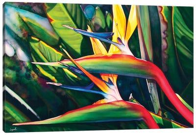 View Hanalei Canvas Art Print
