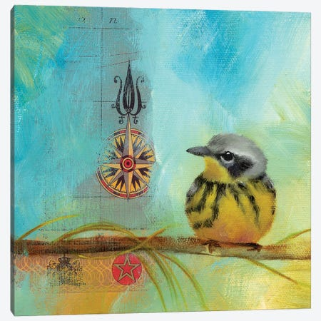 Finch Home II Canvas Print #LLX10} by Lisa Lamoreaux Art Print