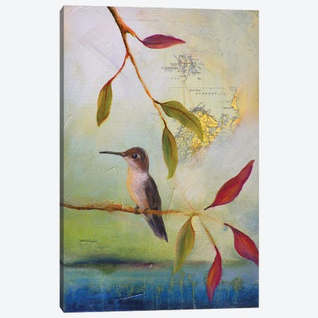 Hummingbird Home Canvas Print #LLX14} by Lisa Lamoreaux Canvas Wall Art