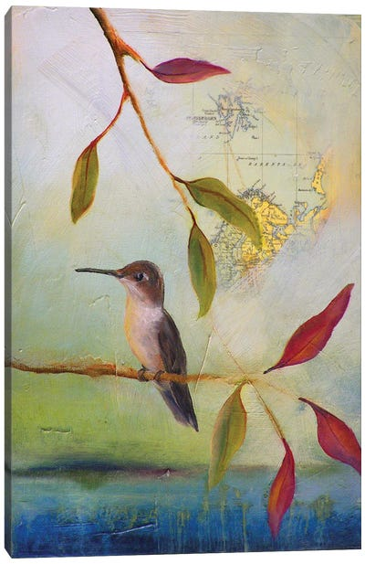 Hummingbird Home Canvas Art Print