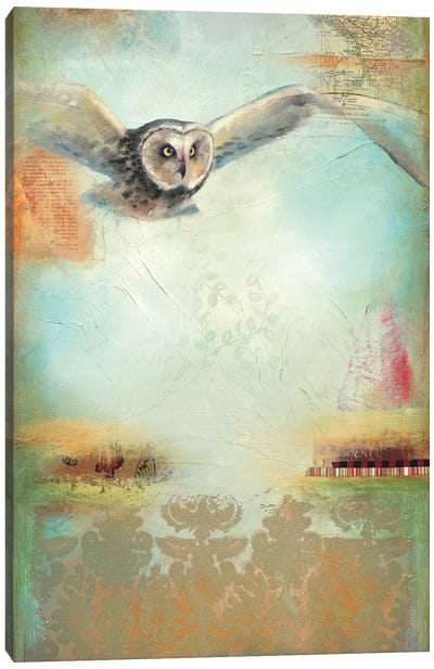 Owl Flight I Canvas Art Print