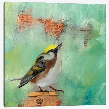 Finch Home I Canvas Print #LLX9} by Lisa Lamoreaux Canvas Artwork