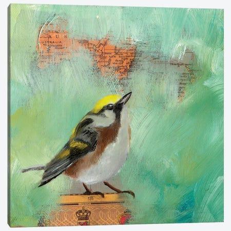 Finch Home I Canvas Print #LLX9} by Lisa Lamoreaux Canvas Artwork