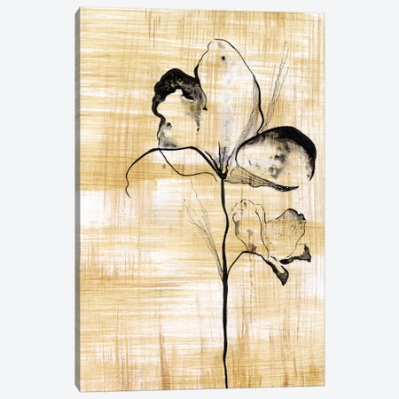 Gilded Beauty I Canvas Print #LLY1} by Lily Liama Canvas Art Print