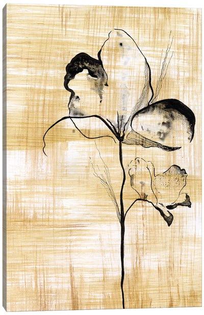 Gilded Beauty I Canvas Art Print