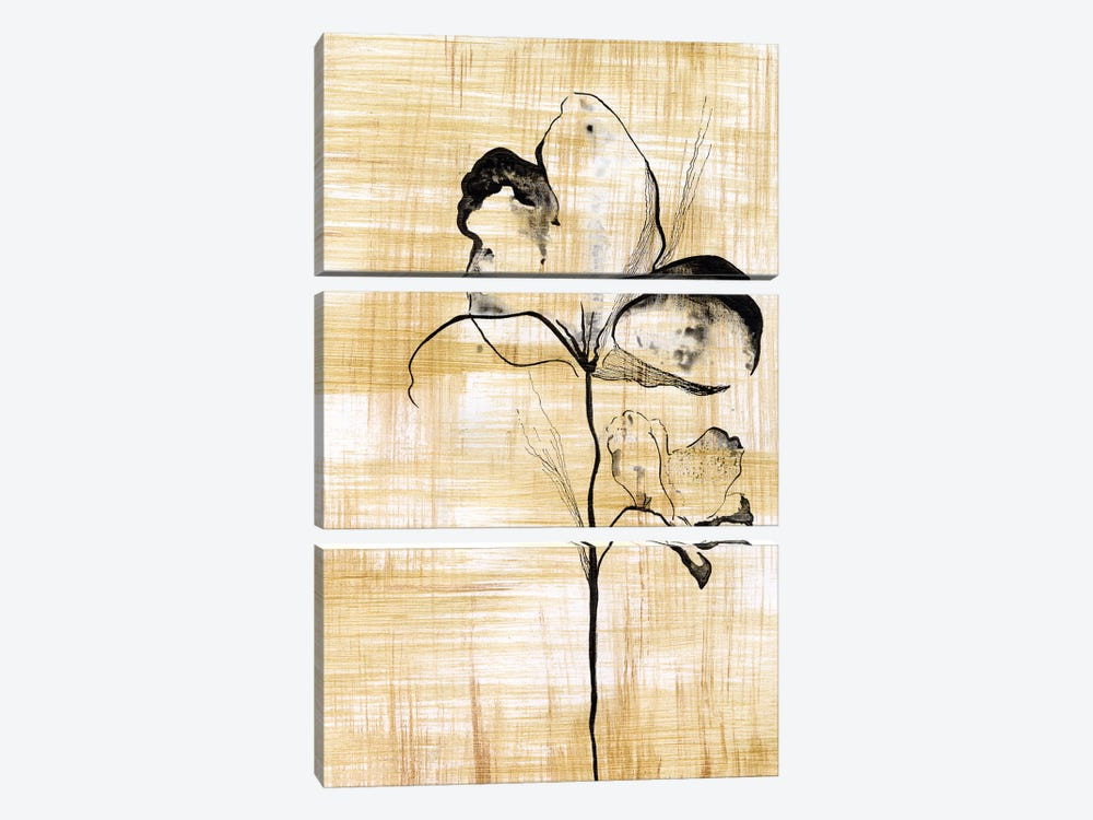 Gilded Beauty I by Lily Liama 3-piece Canvas Artwork
