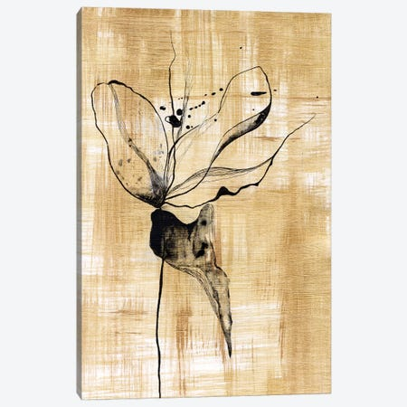 Gilded Beauty II Canvas Print #LLY2} by Lily Liama Canvas Print