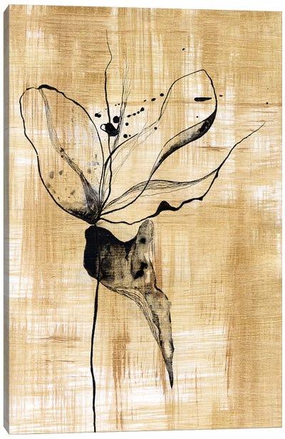Gilded Beauty II Canvas Art Print