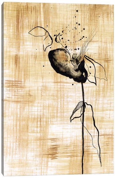 Gilded Beauty III Canvas Art Print