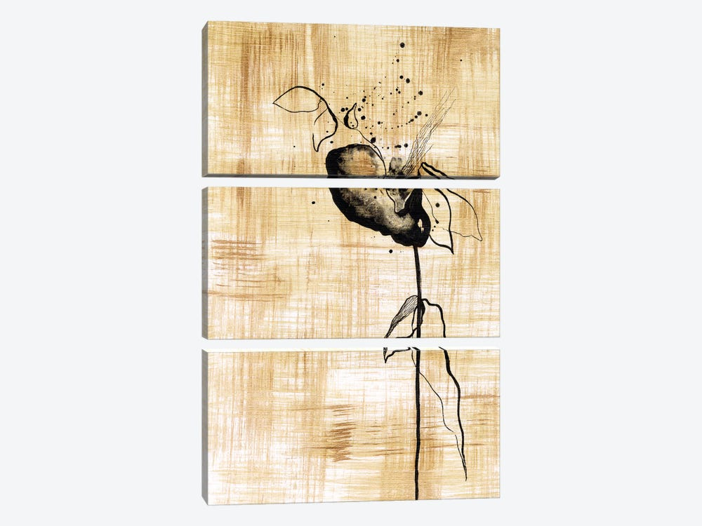 Gilded Beauty III by Lily Liama 3-piece Canvas Art