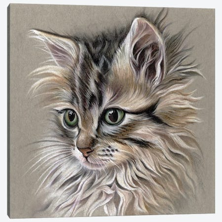 Kitten Portrait I 3-Piece Canvas #LLY4} by Lily Liama Canvas Art