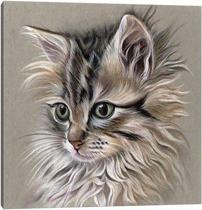 Kitten Portrait I Canvas Art Print