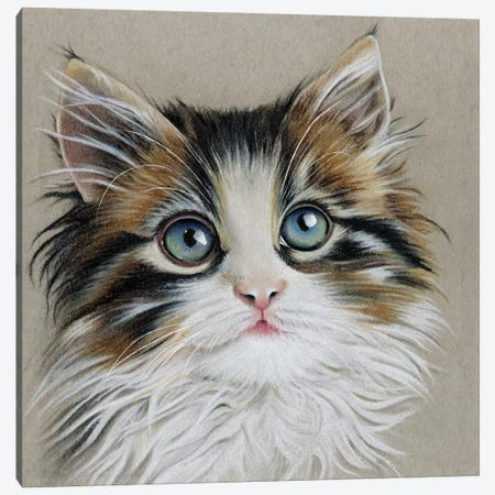 Kitten Portrait II Canvas Print #LLY5} by Lily Liama Canvas Art