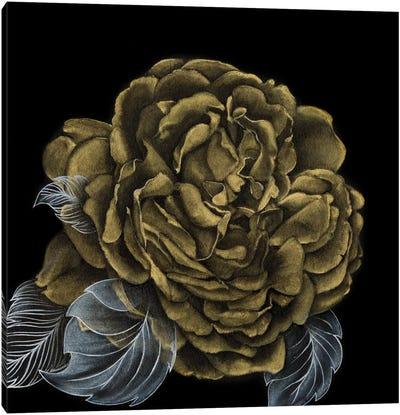 River Roses II Canvas Art Print