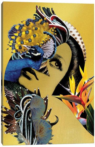 Sirin Canvas Art Print