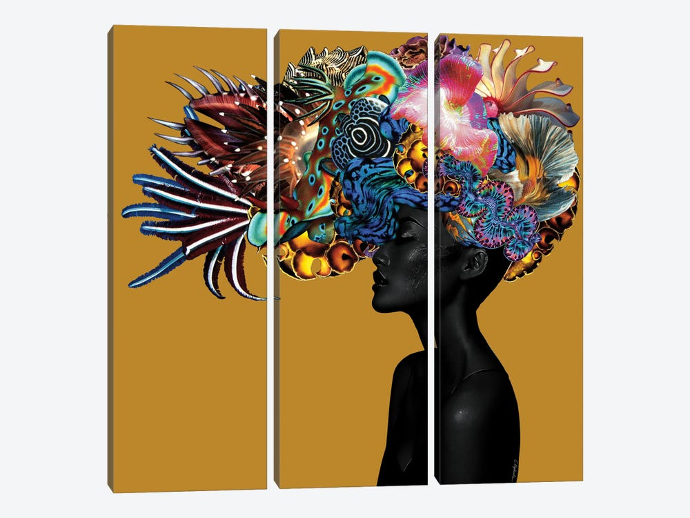 Crowning Glory II by Lolita Lorenzo 3-piece Canvas Artwork
