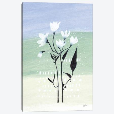 Jasmine Delight II Canvas Print #LMC30} by Lynn Mack Art Print