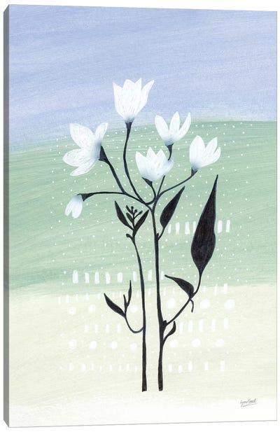 Jasmine Delight II Canvas Art Print