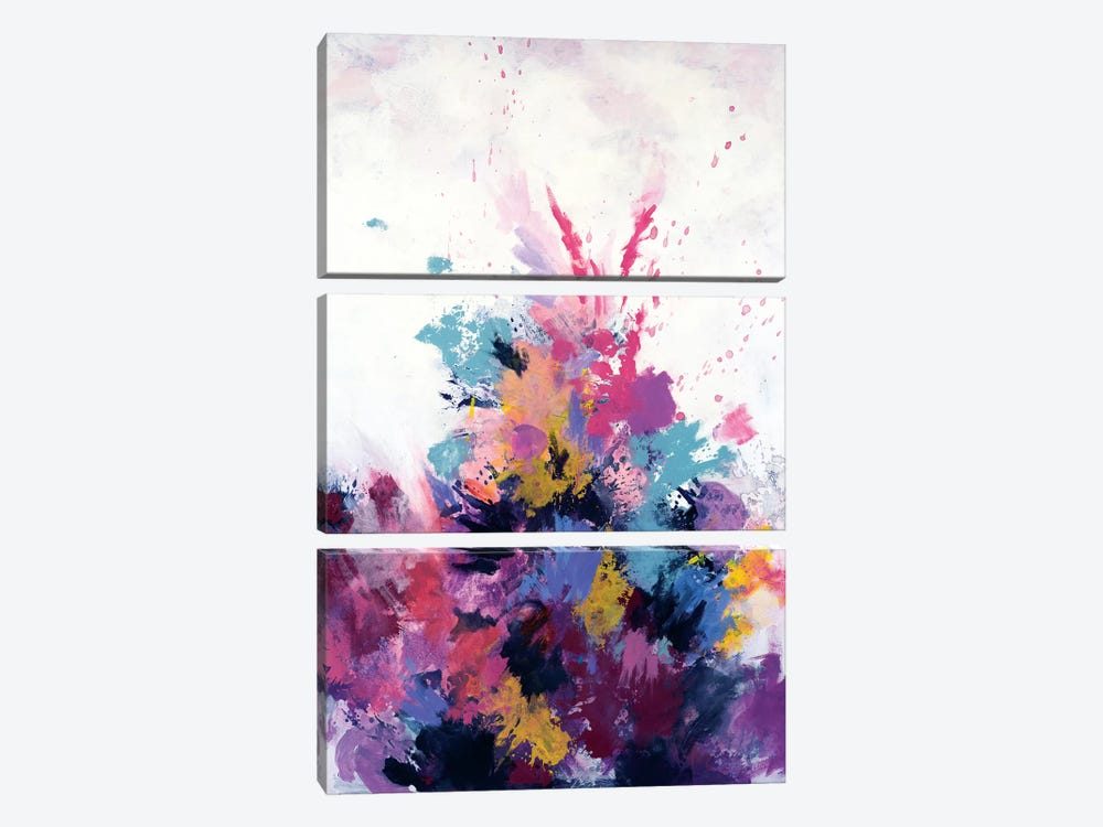 Flora Burst by Laura Mae Dooris 3-piece Canvas Artwork