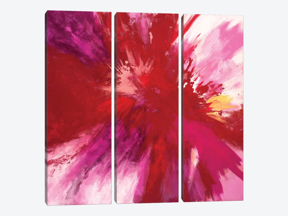 Passion Smash by Laura Mae Dooris 3-piece Canvas Print