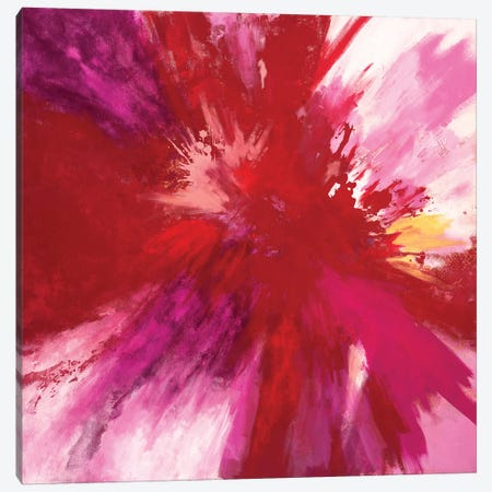 Passion Smash Canvas Print #LMD16} by Laura Mae Dooris Canvas Print