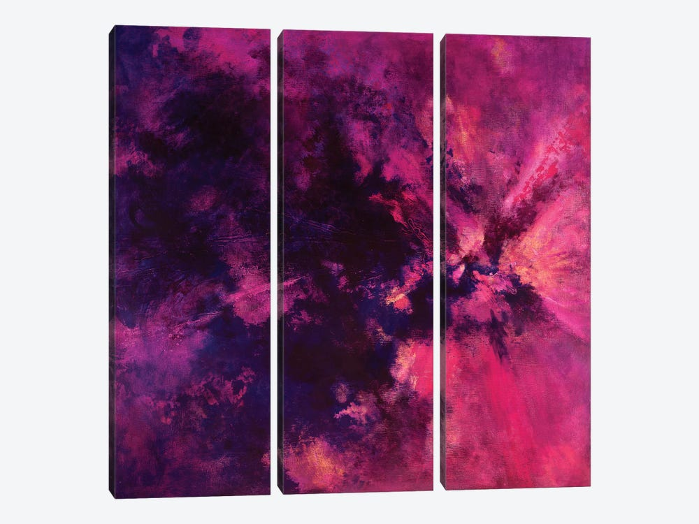 Spirit Bloom by Laura Mae Dooris 3-piece Canvas Art