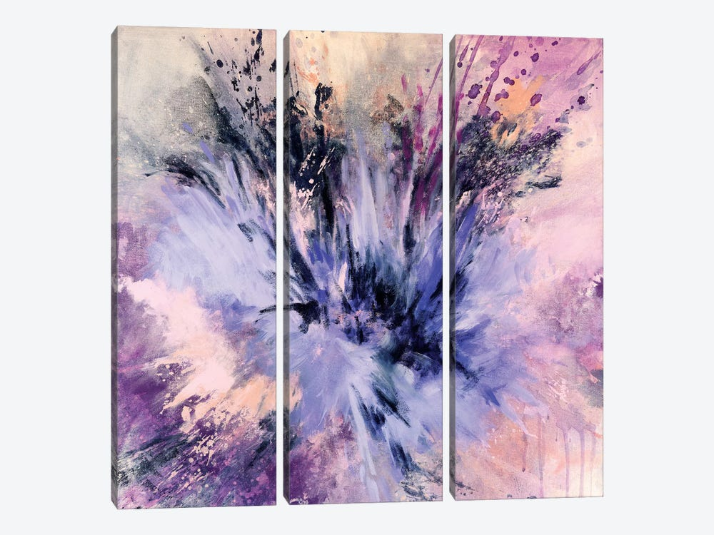 Spring Star Burst by Laura Mae Dooris 3-piece Canvas Artwork