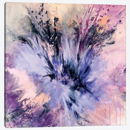 Spring Star Burst Canvas Print #LMD20} by Laura Mae Dooris Art Print